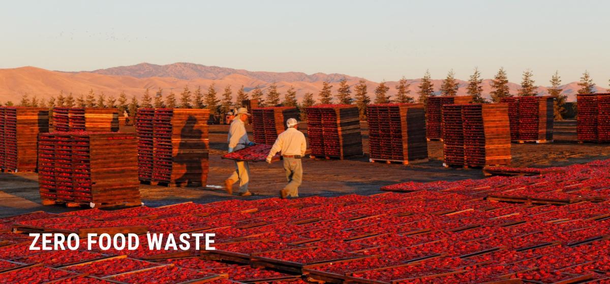 Traina Foods Zero Food Waste Program