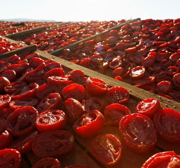 Traina Sun Dried Tomatoes