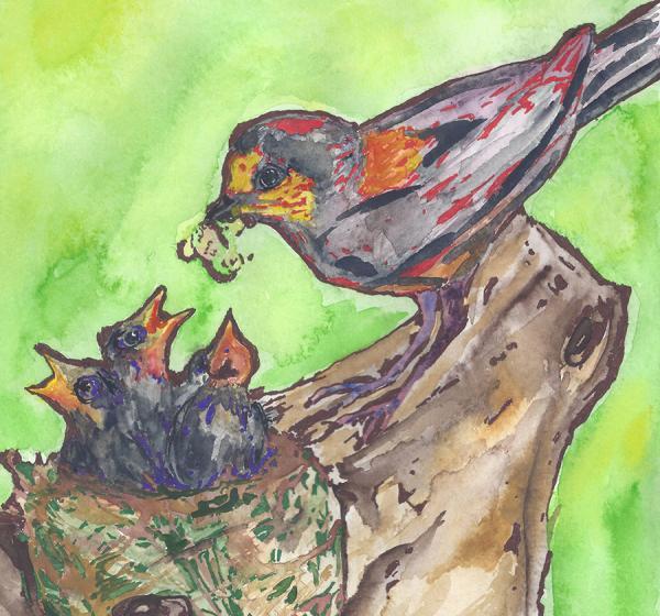 Bird and Babies