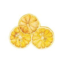 traina_foods_organic_and_natural_dried_lemon_slices